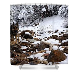 Snow Cup Shower Curtain