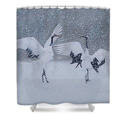 Snow Dancers Shower Curtain