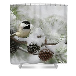 Shower Curtain featuring the photograph Snow Day by Lori Deiter