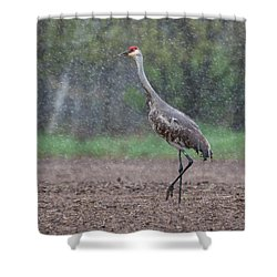 Shower Curtain featuring the photograph Snow Day by Thomas Young