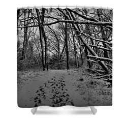 Shower Curtain featuring the photograph Snow Day Walk In The Woods 001 Bw by Lance Vaughn