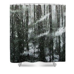 Snow Down Shower Curtain