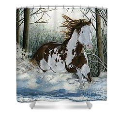 Snow Driftin', Pastel Shower Curtain