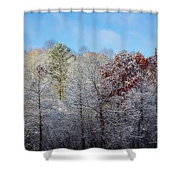 Snow Dust Shower Curtain