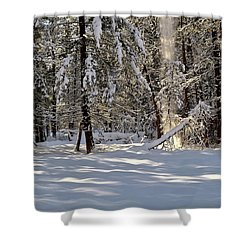 Snow Falling Off Cedars Shower Curtain