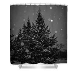 Snow Flakes Shower Curtain
