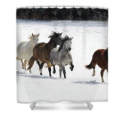 Snow Gallop Shower Curtain