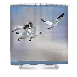 Snow Geese In Flight Shower Curtain by Bonnie Barry