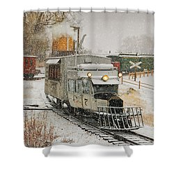 Shower Curtain featuring the photograph Snow Goose by Ken Smith