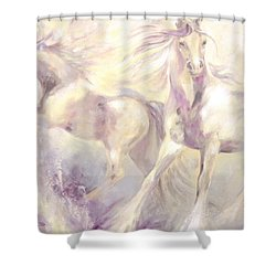 Snow Gypsies Shower Curtain