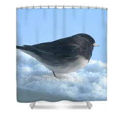Snow Hopping #1 Shower Curtain