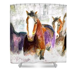Snow Horses Shower Curtain by Frances Marino