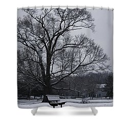 Snow In East Brunswick Shower Curtain