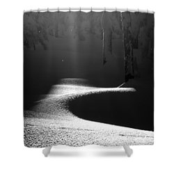 Snow Laden Shower Curtain