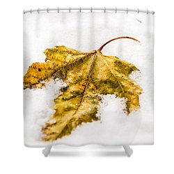 Snow Leaf Shower Curtain