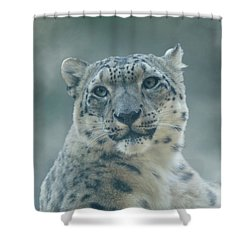 Shower Curtain featuring the photograph Snow Leopard Portrait by Sandy Keeton