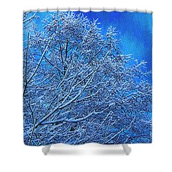 Shower Curtain featuring the photograph Snow On Branches Photo Art by Sharon Talson