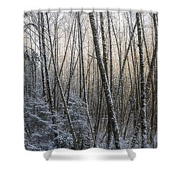 Snow On The Alders Shower Curtain