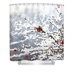 Shower Curtain featuring the digital art Snow On The Maple by Shelli Fitzpatrick