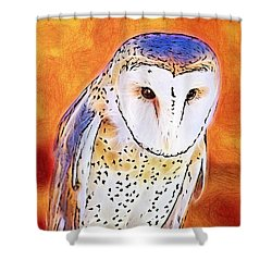 Shower Curtain featuring the digital art White Face Barn Owl by Tracie Kaska