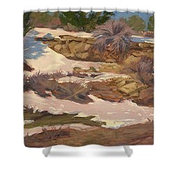 Snow Patch Shower Curtain
