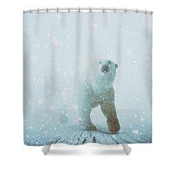 Snow Patrol Shower Curtain