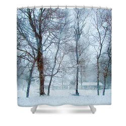Snow Place Like Home Shower Curtain