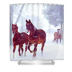 Snow Run Shower Curtain