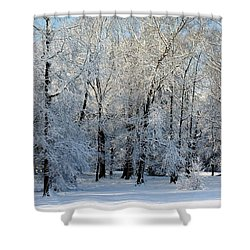 Snow Scene One Shower Curtain