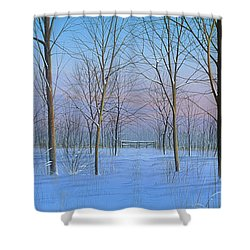 Snow Spectacle Shower Curtain