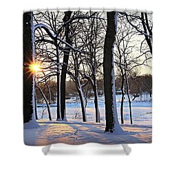 Snow Starred Grove Shower Curtain by Kathy M Krause