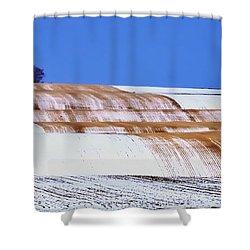 Snow Stubble Tree Line 13955 Shower Curtain by Jerry Sodorff