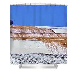 Snow Stubble Tree Line 13955 Shower Curtain
