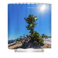 Shower Curtain featuring the photograph Snow Tree by Jonny D