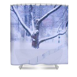 Shower Curtain featuring the photograph Snow Walk Central Park by Dave Beckerman