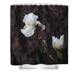 Snow White Iris On Pine Shower Curtain