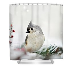 Shower Curtain featuring the photograph Snow White Tufted Titmouse by Christina Rollo