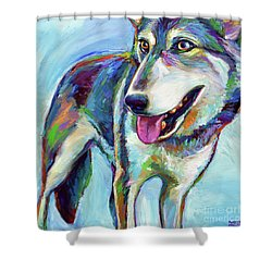 Snow Wolf Shower Curtain by Robert Phelps