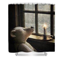 Snow Wonder Shower Curtain