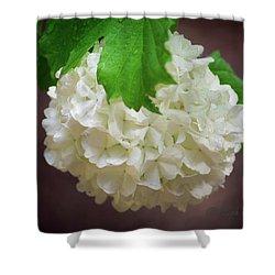 Snowball Bloom Shower Curtain