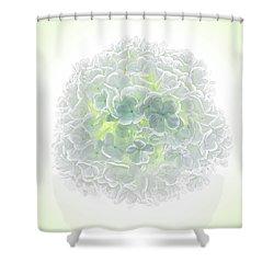 Snowball Shower Curtain by Robert FERD Frank