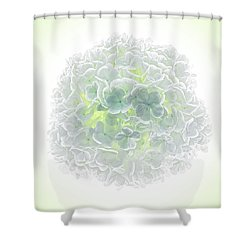Snowball Shower Curtain