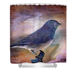 Snowbird Stories... Shower Curtain by Arthur Miller