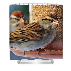 Snowbirds Shower Curtain