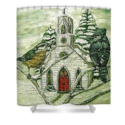 Snowbirds Visit St. Paul Shower Curtain by Kim Jones