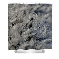 Snowchrystals  Shower Curtain by Leif Sohlman