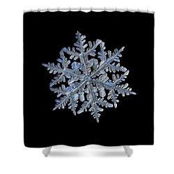 Snowflake Macro Photo - 13 February 2017 - 3 Black Shower Curtain