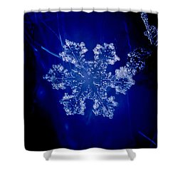 Snowflake On Blue Shower Curtain