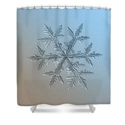 Shower Curtain featuring the photograph Snowflake Photo - Asymmetriad by Alexey Kljatov