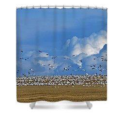 Snows And Storms Shower Curtain